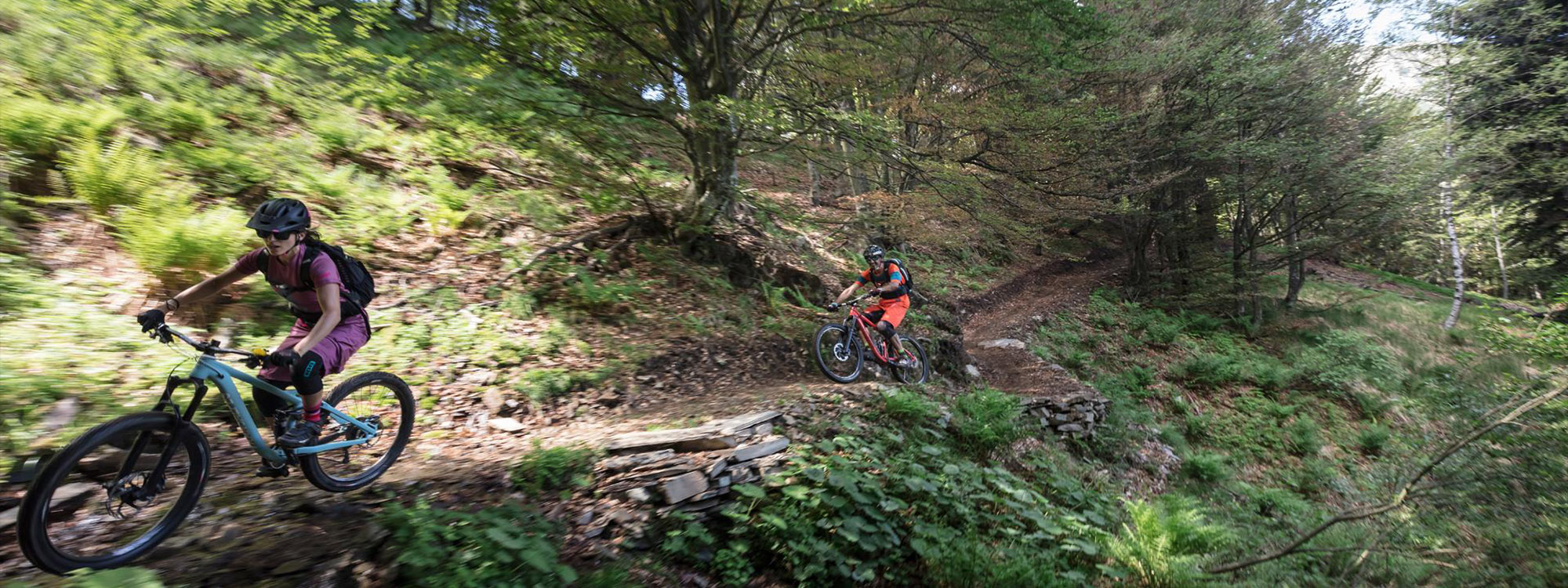onlinebooking950x400-mtb-1